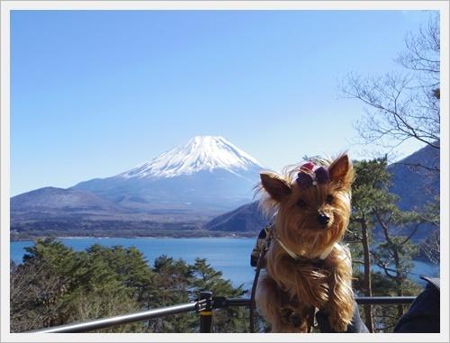 富士山一周IMGP5600-20170402