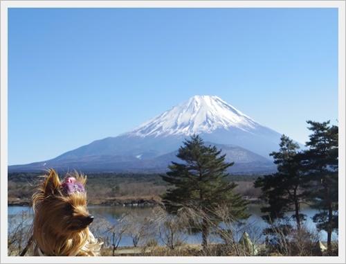 富士山一周IMGP5603-20170402