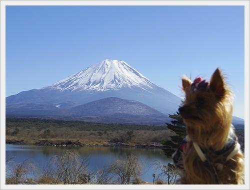 富士山一周IMGP5604-20170402
