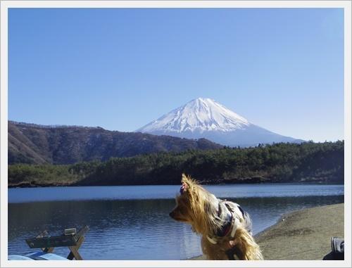 富士山一周IMGP5614-20170402