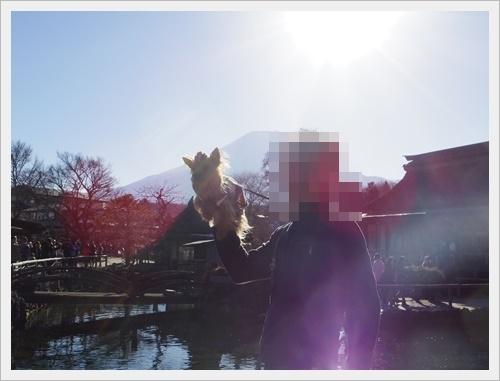富士山一周IMGP5618-20170402