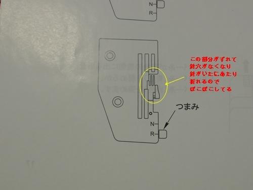 IMGP5272.jpg
