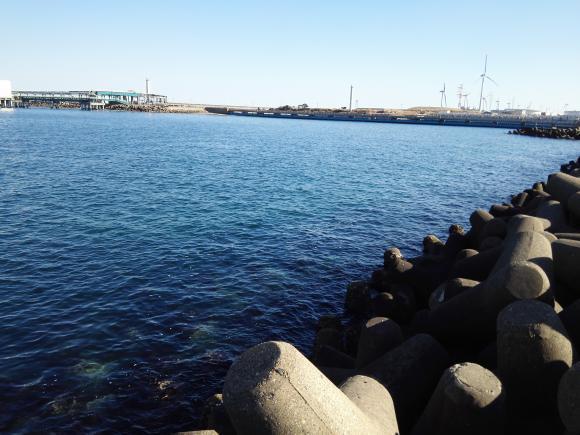 鹿島 メバル 海 鹿島港