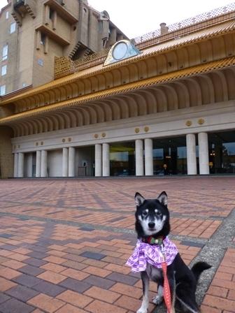 ホテル川久朝のお散歩1