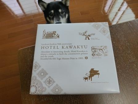 ホテル川久お土産18