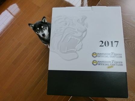 阪神2017年記念品1