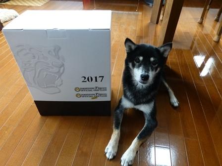 阪神2017年記念品3