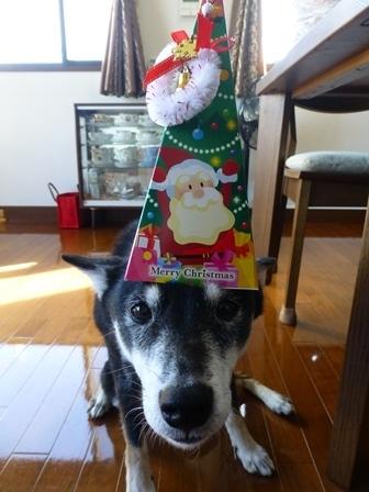 2016クリスマス3
