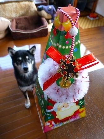 クリスマスサピニエール13