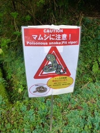 大村屋お散歩20