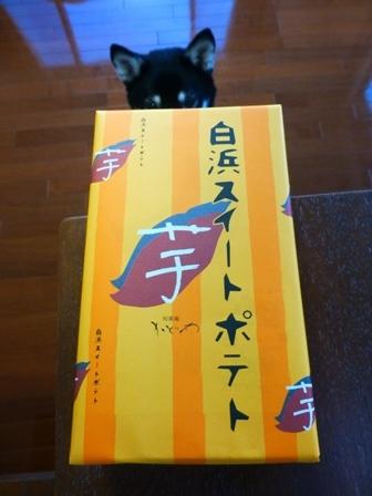 川湯温泉お土産20