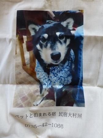 大村屋エコバック7
