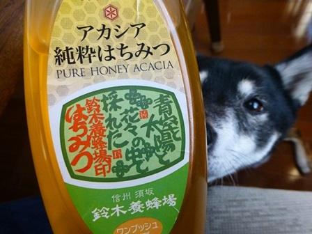 サクマはちみつりんごみるく (9)