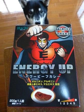 ENERGYUPパワービーフカレー1