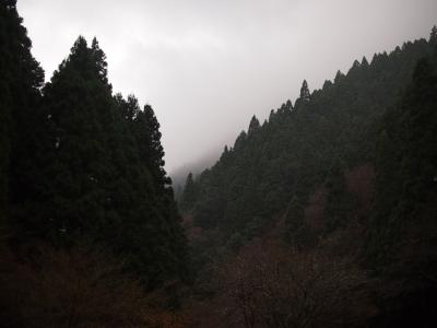 20161201_004.jpg