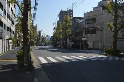 2016-11-05_52.jpg