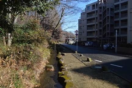 2016-12-23_39.jpg