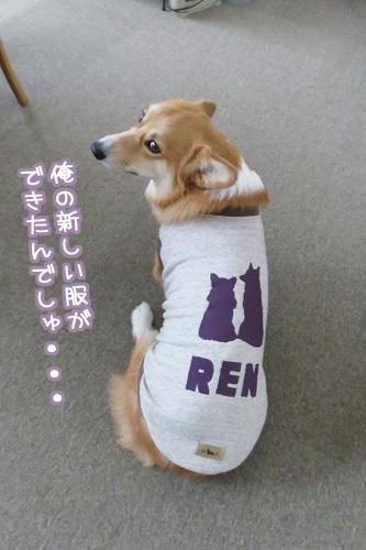 新しい服☆