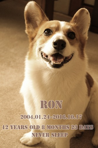RON_2017012401040333d.jpg