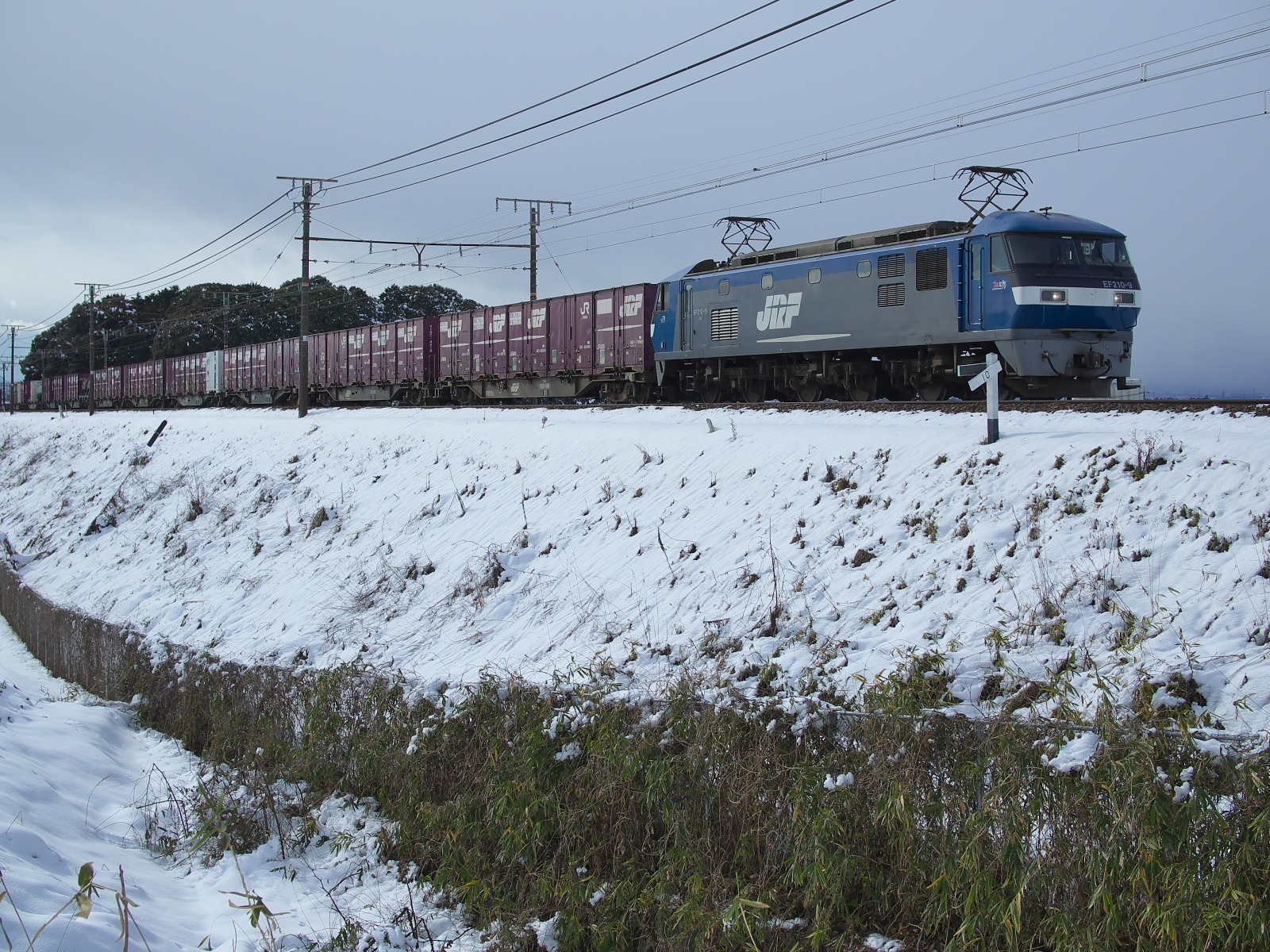 P1240086.jpg