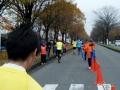2016宇都宮マラソン18