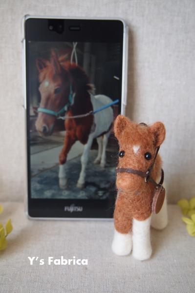 トレッキング馬、斑毛のS号♪
