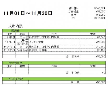 201611支出内訳