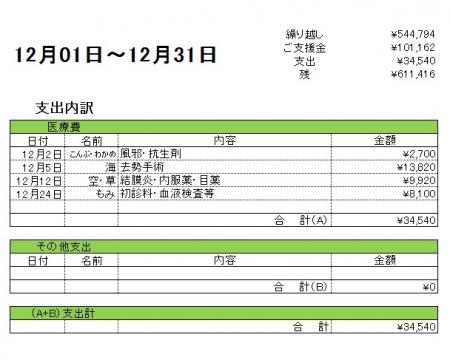 201612支出内訳