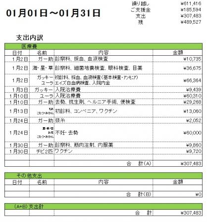201701支出内訳