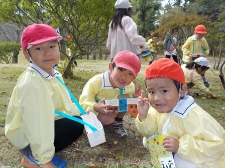八坂どんぐり (4)