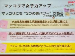 fc2blog_201612121810049e9.jpg