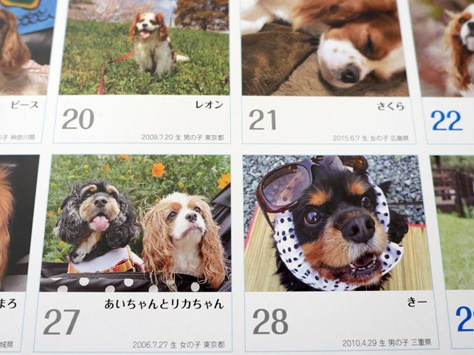 blogP1000087.jpg