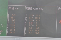 20161212B (6)