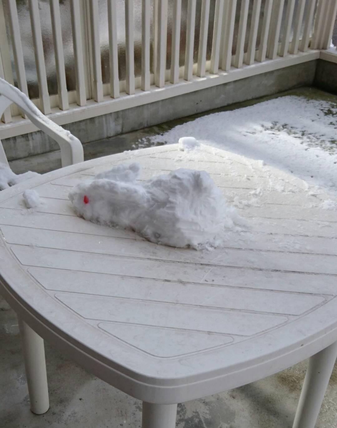 初雪うさぎ