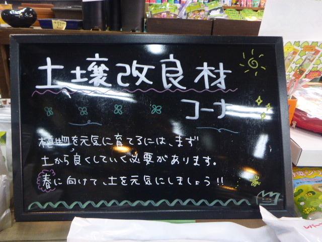 2017-01-26_045.jpg