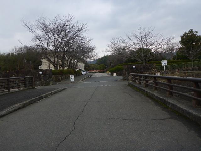 2017-02-06_123.jpg