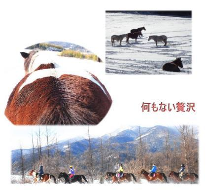 20161125_blog.jpg