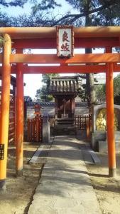 17国分寺と神谷神社3