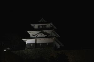 17夜の丸亀城1