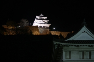 17夜の丸亀城2