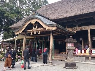 161113人吉阿蘇神社七五三(320x240)