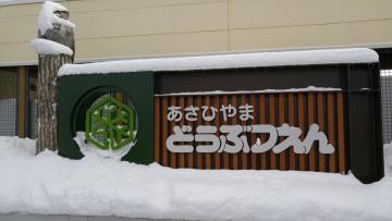 20161118-旭山動物園 (11)