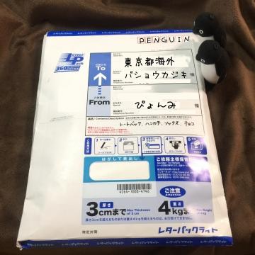 20161204-トートなど (1)-加工