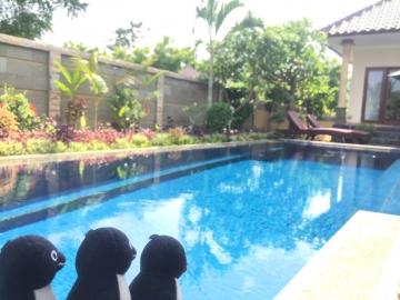 20161224-20161231-Bali (44)