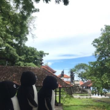 20161224-20161231-Bali (198)