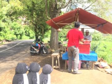 20161224-20161231-Bali (305)