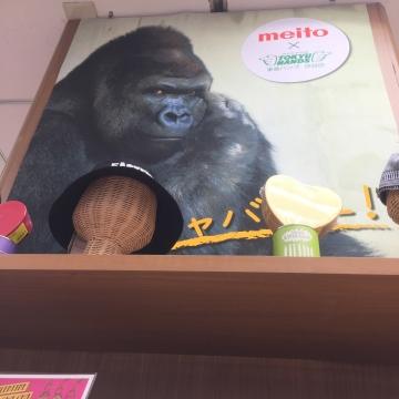 20170128-meito (2)