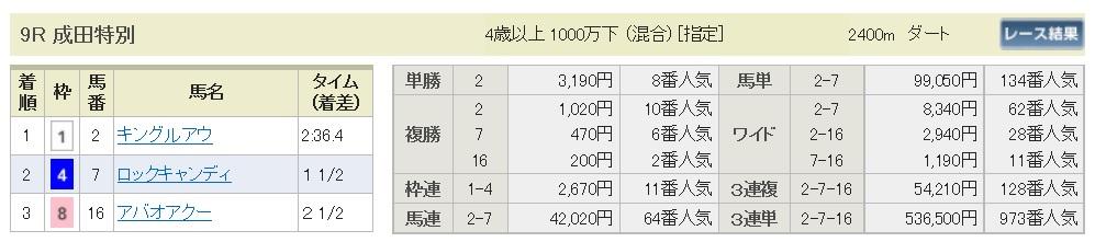 【払戻金】170108中山9R(三連複 万馬券 的中)