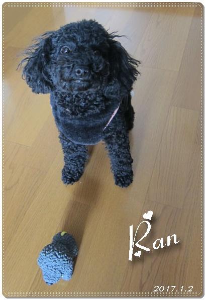 ran-1-2.jpg