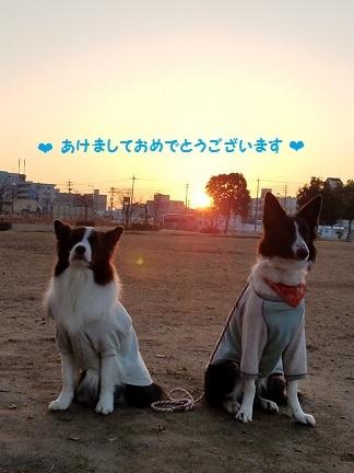 20170101_072510 - コピー